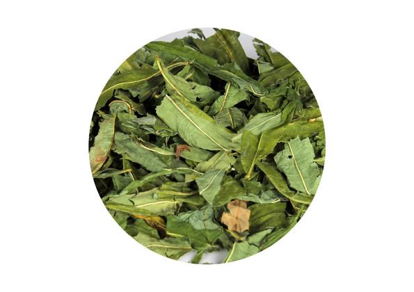 иван чай полезные свойства алтайские экологические травы